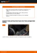 Πώς αλλαγη και ρυθμιζω Τακάκια Φρένων VW TOURAN: οδηγός pdf