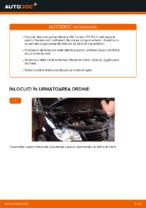 Cum se înlocuiesc și se ajustează Discuri frana VW TOURAN: manual pdf