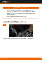 Schimbare Placute Frana VW TOURAN: pdf gratuit