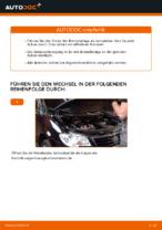 Austauschen von Scheibenbremsbeläge VW TOURAN: PDF kostenlos