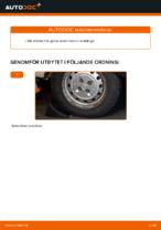 PDF guide för byta: Flerspårsrem FIAT