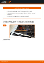 Instalace Olejovy filtr FIAT DOBLO Cargo (223) - příručky krok za krokem