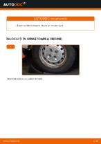 Manual intretinere FIAT pdf