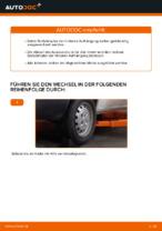Wie Federbein FIAT DOBLO tauschen und einstellen: PDF-Tutorial