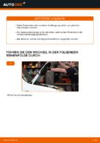 Montage Stoßdämpfer Satz FIAT DOBLO Cargo (223) - Schritt für Schritt Anleitung