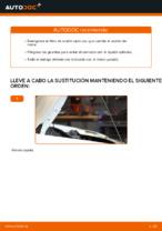 Cambio Filtro de Aceite FIAT DOBLO: tutorial en línea