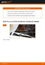 Tutorial di riparazione e manutenzione DOBLO