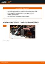 Výmena Tlmič pruzenia FIAT DOBLO: dielenská príručka