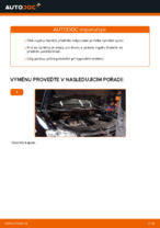 Vyměnit Tlumic perovani VW TOURAN: dílenská příručka