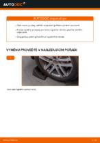 Vyměnit Odpruzeni VW TOURAN: dílenská příručka