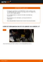 PDF handleiding voor vervanging: Remschijven FIAT achter en vóór