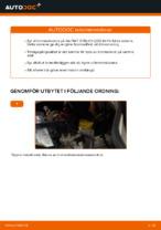 PDF guide för byta: Bromsskivor FIAT bak och fram