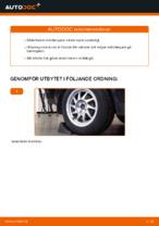 Ford C-Max dm2 reparations- och underhåll handledning