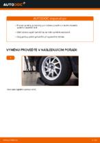 Jak vyměnit ložisko zadního tlumiče na autě Ford Focus 2 DA