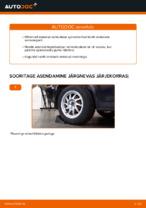 Kuidas vahetada tagumisis suspensiooni vedrusid Ford Focus 2 DA