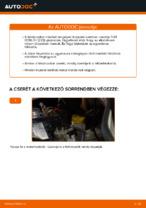 Lépésről lépésre javítási útmutató FIAT DOBLO Box Body / Estate (263)