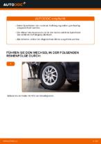 Wie Sie die hinteren Fahrwerksfedern am Ford Focus 2 DA ersetzen