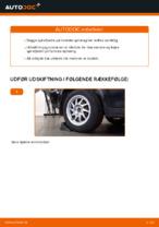 Værkstedshåndbog til Ford Focus daw