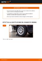 Come sostituire le molle della sospensione posteriore su Ford Focus 2 DA