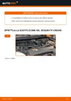 Libretto di istruzioni FORD gratuito