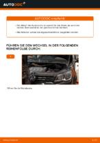 Wie Sie einen vorderen Bremssattel am VOLKSWAGEN TOURAN I (1T3) ersetzen