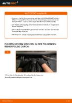 Ersetzen von Bremsscheibe VW TOURAN: PDF kostenlos