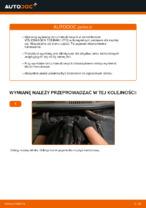 W jaki sposób wymienić tylne tarcze hamulcowe w VOLKSWAGEN TOURAN I (1T3)