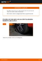 Tipps von Automechanikern zum Wechsel von PEUGEOT PEUGEOT 107 1.4 HDi Heckklappendämpfer
