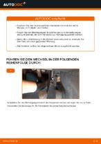Tipps von Automechanikern zum Wechsel von VOLVO Volvo v50 mw 1.6 D Kraftstofffilter