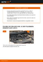 Wie Bremsscheibe FORD FOCUS austauschen und anpassen: PDF-Anweisung