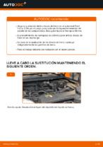 PDF manual sobre mantenimiento FOCUS