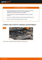 Vymeniť Brzdový kotouč FORD FOCUS: zadarmo pdf