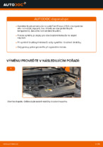 Jak vyměnit přední brzdové kotouče na Ford Focus 2 DA