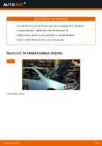 Schimbare Filtru ulei FIAT PUNTO: online ghidul