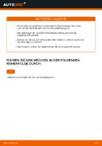 VW GOLF V (1K1) Stützlager: Online-Handbuch zum Selbstwechsel
