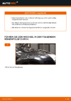 Ford Focus 2 da Reparaturanweisung Schritt-für-Schritt
