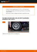 Stabilisator Koppelstange hinten und vorne tauschen: Online-Tutorial für FORD FOCUS