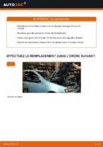 Quand changer Filtre à Huile FIAT PUNTO (188) : manuel pdf