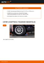 Hvordan installeres den foreste krængningsstabilisator på Ford Focus 2 DA