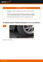 Instrukcja warsztatu dla Ford Focus DAW