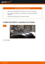 Výměna zadní levý pravý Odpruzeni FORD FOCUS: online průvodce