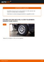 Wie der Austausch des unteren Vorder-Querlenkers der hinteren Einzelradaufhängung beim Ford Focus 2 DA funktioniert