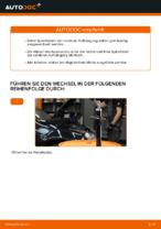 Federn auswechseln VW GOLF: Werkstatthandbuch