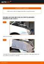 Wie der Austausch des Motor-Keilrippenriemens bei VOLKSWAGEN POLO IV (9N_) -Autos funktioniert
