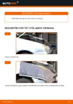 När byta Poly-v rem VW POLO (9N_): pdf handledning