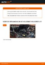 Hoe Oliefilter motor veranderen en installeren: gratis pdf handleiding