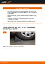 Wie Spurkopf beim FORD FIESTA V (JH_, JD_) wechseln - Handbuch online