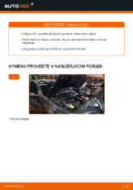 Online průvodce zdarma jak obnovit Olejovy filtr RENAULT MEGANE II Saloon (LM0/1_)
