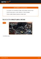 Când trebuie sa schimbi Filtru ulei RENAULT MEGANE II Saloon (LM0/1_): pdf manual