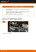 Schimbare Amortizor TOYOTA PRIUS: manual de intretinere si reparatii